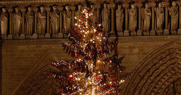 Paris\u0027 Christmas CHRISTMAS! Pinterest Christmas trees, Happy
