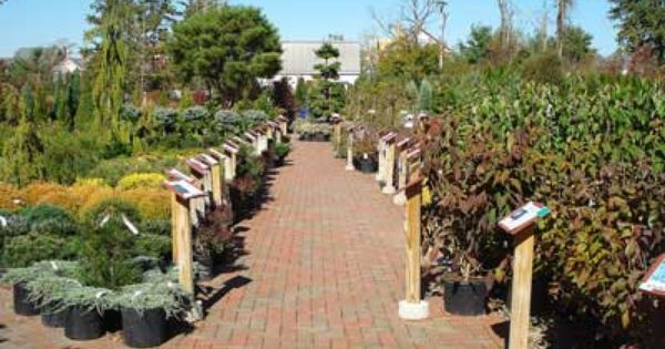 65 best ideas about Garden centers on Pinterest
