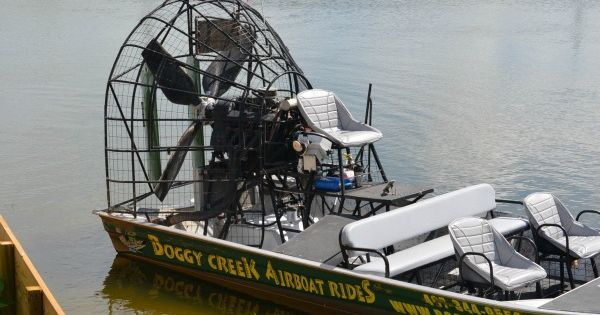 Boggy Creek Airboat Rides In Kissimmee Florida Visitkiss Travel Pinterest Florida Y