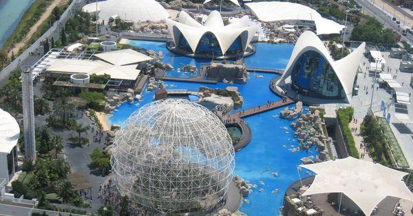 Spain valencia l oceanografic aquarium places to go for Aquarium valencia bar