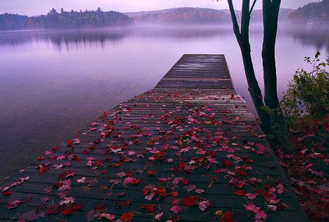 autumn on the lake - I'd like to sit at the end