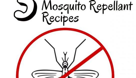 diy home sweet home: Enjoy a Mosquito Free Summer.....helpful so that we