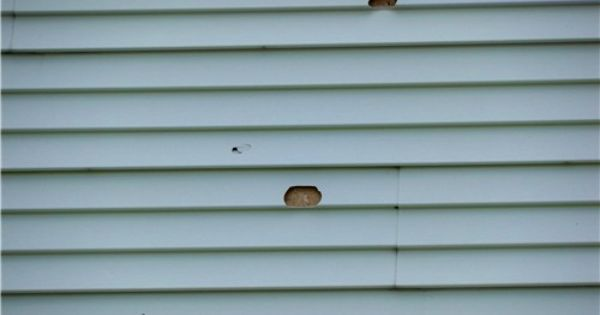 How To Repair Holes In Vinyl Siding Shell Busey Home Improvements Vinyl Siding Repair Cleaning Vinyl Siding Vinyl Siding