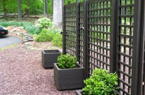 Living privacy screen trellis diy movable privacy screen for Living screen fence