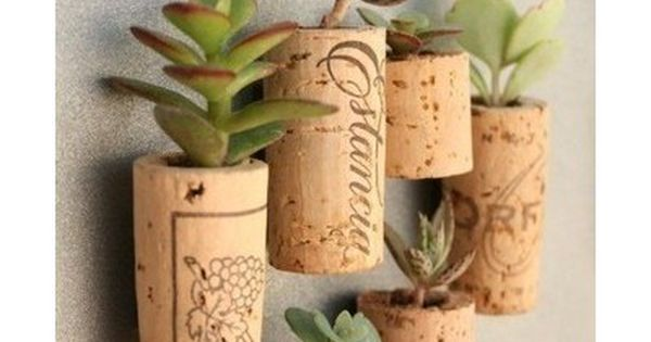 Use pretty wine corks to make planters for tiny succulents. Then put