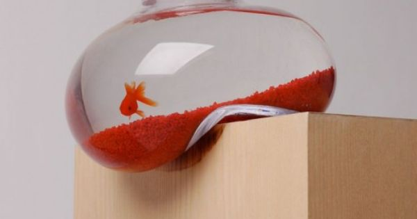 Soft Fish bowl - by Psalt Design