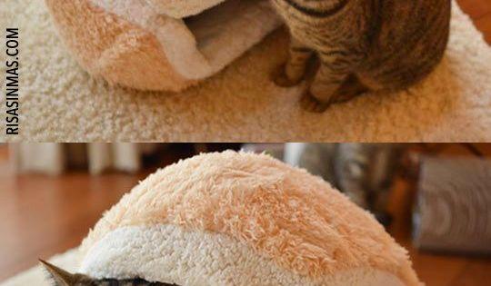 Si te gustan los gatos morir s de la ternura con esta for Cama hamburguesa