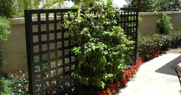 Decorative privacy screen front patio ideas pinterest gardens backyard landscaping and