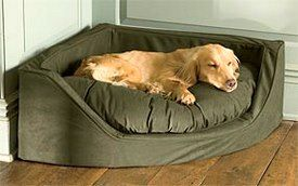 Finding The Right Corner Dog Bed With Images Corner Dog Bed