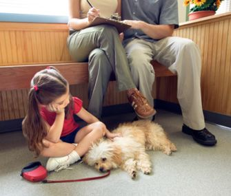 Dr Patty Khuly Dishes On Her Top Veterinarian Pet Peeves Such As Exam Room Dog Training Near Me Pets Dogs