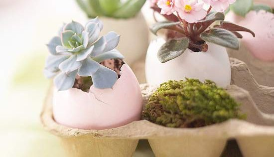 For Easter decor, why not make egg planters? After Easter, the plants