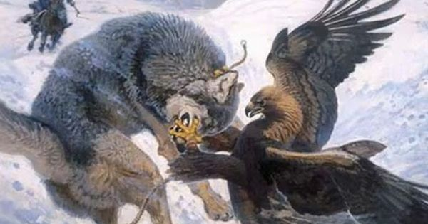 Golden Eagle vs Bald Eagle   First In 936-45 AD the ...