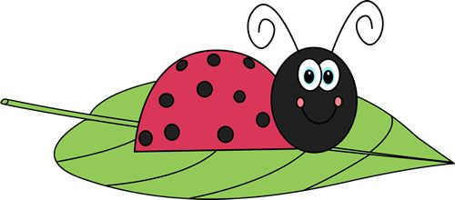 green ladybug clipart - photo #39