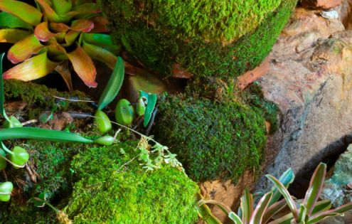 Add Charm To Pots And Stones With A Little Moss « DIY
