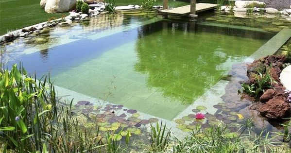 Diy natural pools build your own swimming pond home for Build your own waterfall pond