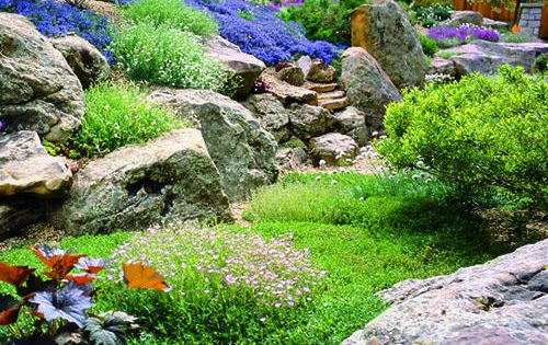 Rock Garden, miniature garden idea