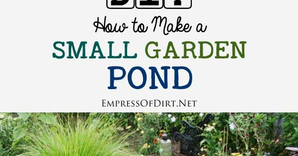 Advice For Starting A New Garden Pond Water Plants And Garden Ponds