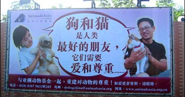 Pictures Of Chinese Eating Dogs