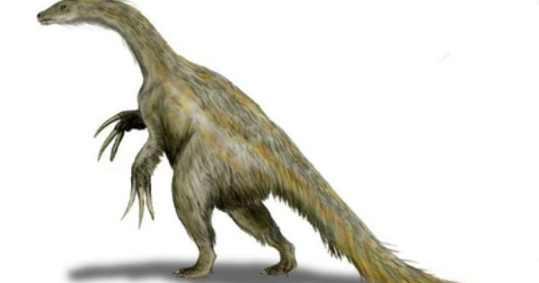 Therizinosaur Isn T A Household Name Says Brian Switek At Smithsonian Magazine But They Are Some Of The Strangest Weird Creatures Prehistoric Cute Dinosaur