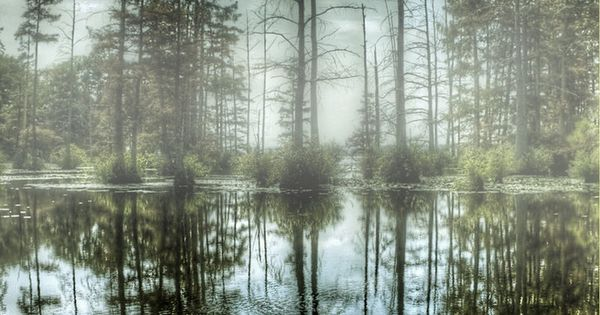 ~~Foggy Lake ~ Lake Conway, Mayflower, Arkansas by joelht74~~