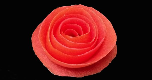 Tomato rose flower beginners lesson by mutita the art