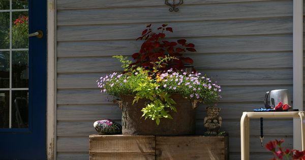 plant in an old copper boiler   Vintage Gardening   Pinterest   Plants, Gardens and Moss garden