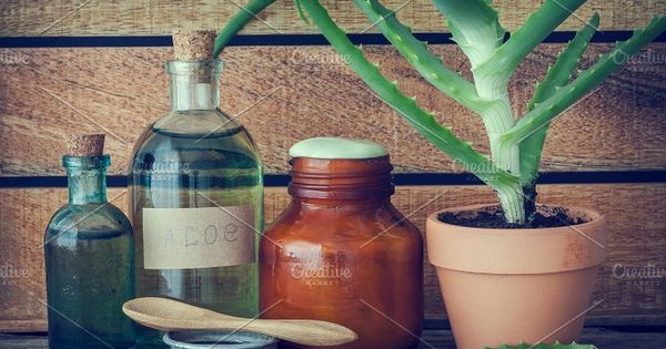 Aloe plant in flowerpot, bottle of organic aloe vera essence, cream or ointment and other products on wooden table.