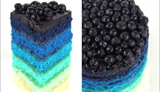 ombre blueberry cake love the colors!