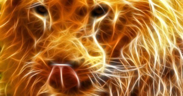 For gt cool animal backgrounds light lion fractal - Cool animal wallpaper light ...