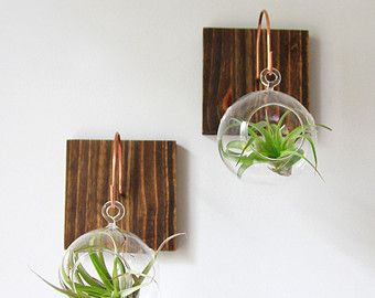 Eco Native Artisan By Gemsofthesoil On Etsy Airplant Wall Wall Mounted Plant Holder Plant Wall