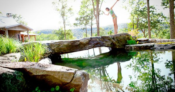 I'll take it! Natural Swimming Pool Project Page - Water House Pools