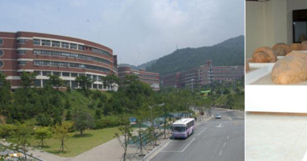 Busan silla university museum artifacts from gaya shilla for Silla universidad