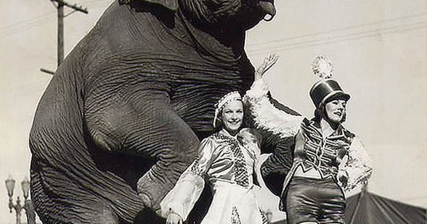 circus girls with standing elephant | Circus party theme ...