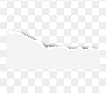 Vetor Em Branco De Papel Rasgado Bordas Rasgadas Com Espaco Para Texto Pagina Rasgada Para Web E Impressao De Apresentacao De Publicidade Promocional Papel Rasg Torn Paper Diy Paper Flower Templates
