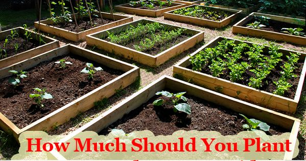 31 fantastic how much to landscape your backyard for How much to landscape a yard