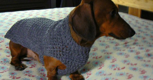 Mini Dachshund Sweater To Crochet Rainbow Crochet Dachshund Or