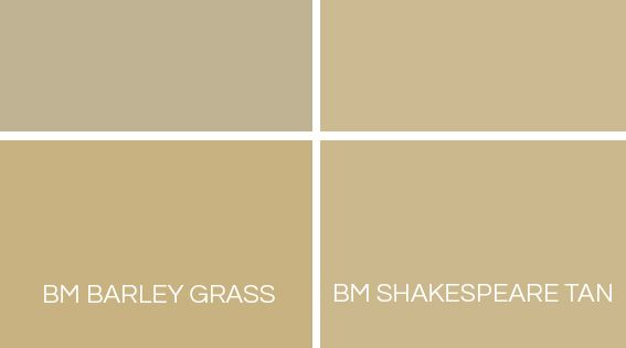 Shades Of Gold Gold Paint Colors Barley Grass And