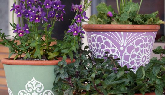 painted pots & purple flowers