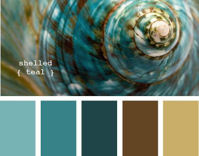 Coastal Decor Color Palette - Shelled Teal - Color Combo