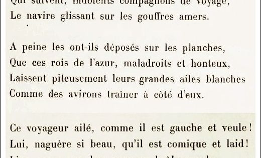 Lalbatros Aprender Francés