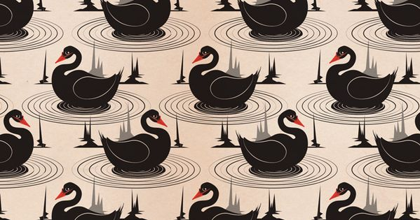 Black swan swans and patterns on pinterest