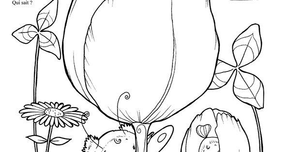 Les bebes fees page 11 sur 16 sur - Hugo l escargot com coloriage ...