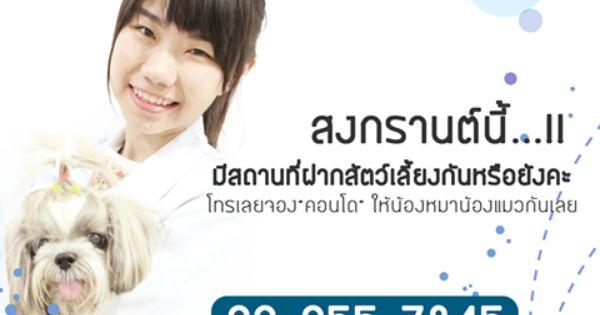สงกรานต น ค ณม สถานท ฝากส ตว เล ยงแสนร กของค ณแล วหร อย ง Thailand Media Press Release ข าวประชาส มพ นธ ฝากข าวประชาส มพ นธ ฟร