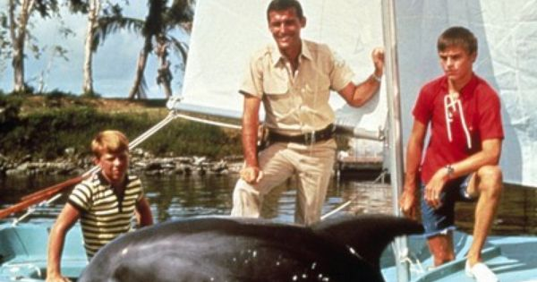 Flipper I Always Watched This I Had A Big Crush On