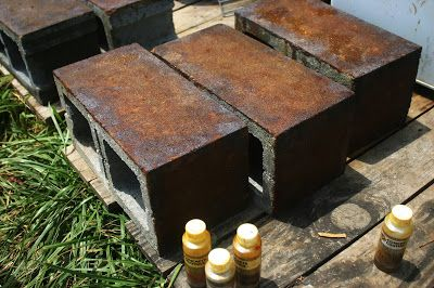 Staining Concrete Blocks Cinder Block Wall In 2019
