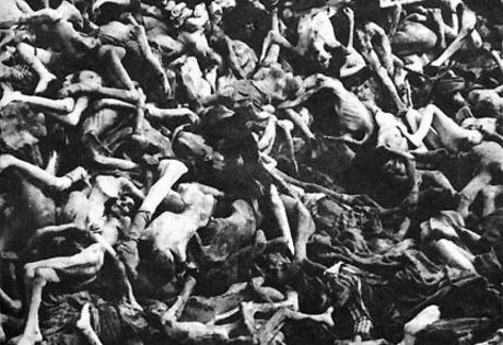 others murdered during the holocaust essay 91 important facts about the holocaust by  young children were particularly targeted by the nazis to be murdered during the holocaust  others underwent.