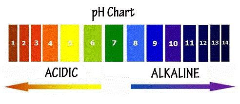 All about swimming pool ph total alkalinity pool water help pinterest ph and pool chemicals Swimming pool high alkalinity