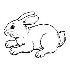 Top 10 Free Printable Rabbit Coloring Pages Online Bunny Coloring Pages Easter Coloring Pages Cartoon Coloring Pages