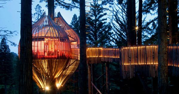 The Redwoods Treehouse in New Zealand offers a unique tree-top location for