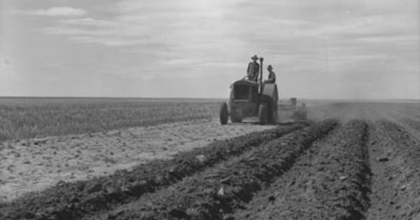 the dust bowl and agriculture essay Many of the great themes of american history are tied up in the dust bowl story: agricultural settlement and frontier struggle industrial mechanization with the arrival of tractors the migration from farm to city, the transformation from rural to urban.